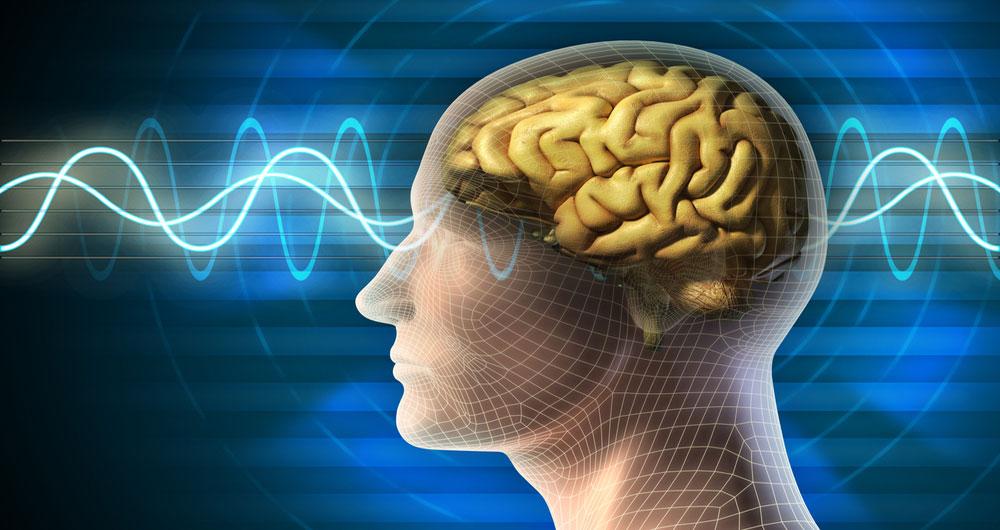 بهبود ظرفیت حافظه صوتی مغز با نیروی مغناطیسی