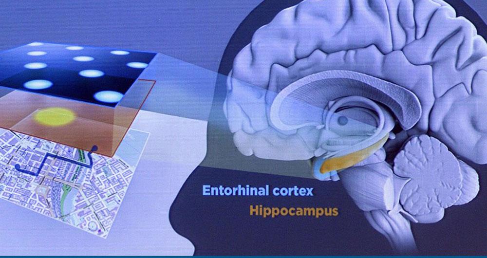خطر gps برای مغز