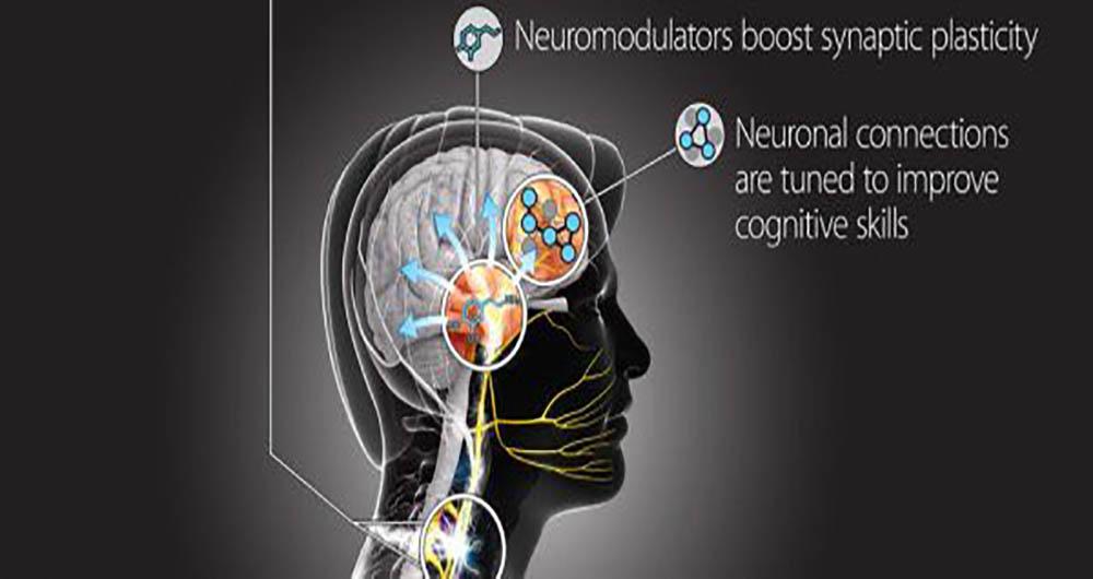 دست کاری ارتش آمریکا در مغز انسان