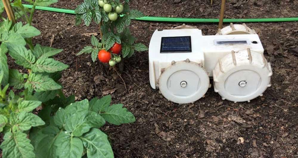 ساخت ربات وجین کننده علف هرز توسط شرکت رومبا