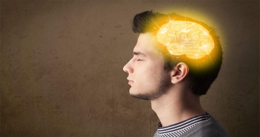 مغز انسان توانایی درک بیش از ۱۱ بُعد را دارد