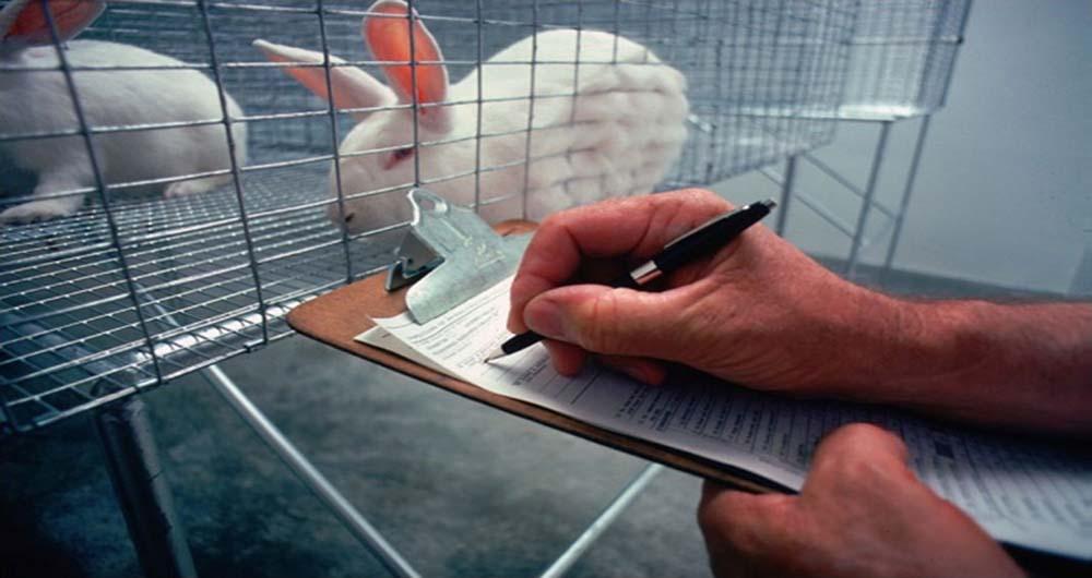 تولیدات ۵ میلیون دلاری موسسه رازی در بخش حیوانات آزمایشگاهی