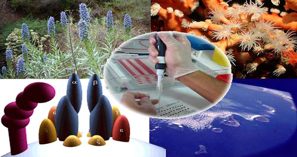 کاهش ضایعات کشاورزی و تصفیه آب های سطحی با استفاده از فناوری نانو