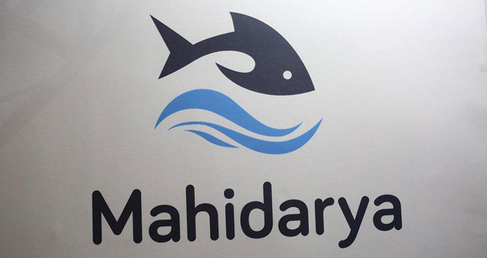 سایت ماهی دریا، فروش آنلاین ماهی و میگو