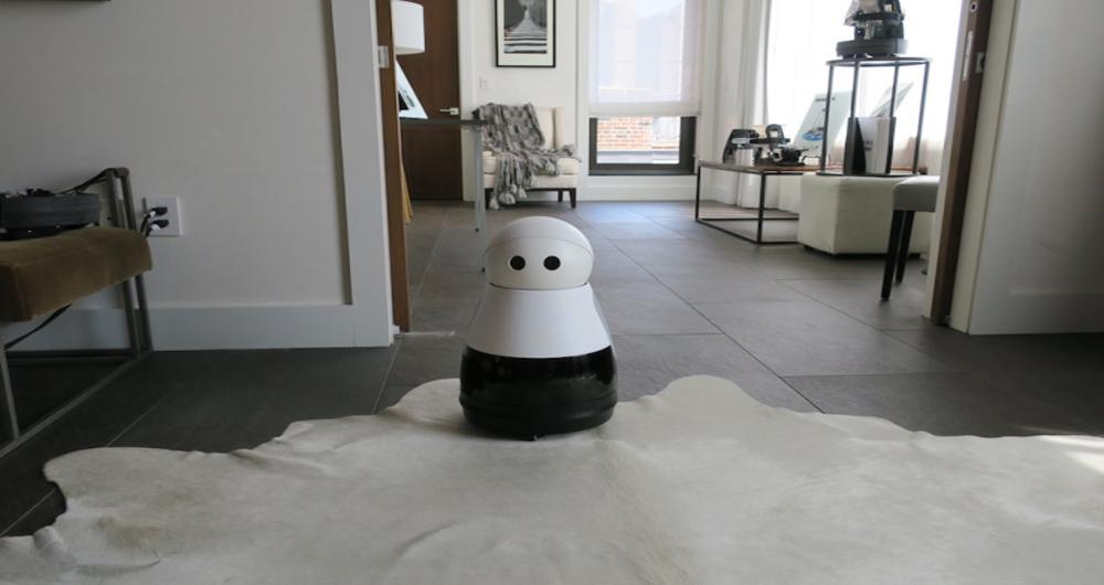 ربات کوچک Kuri