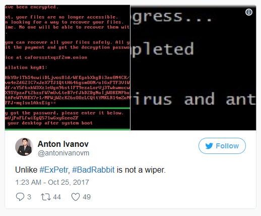 باج افزار خرگوش بد