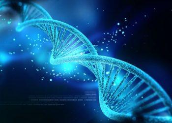 سرعت تکثیر DNA در درمان سرطان