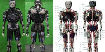ربات کنگورو