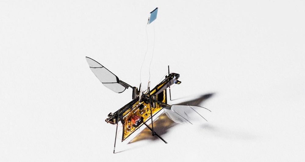حشرات رباتیک