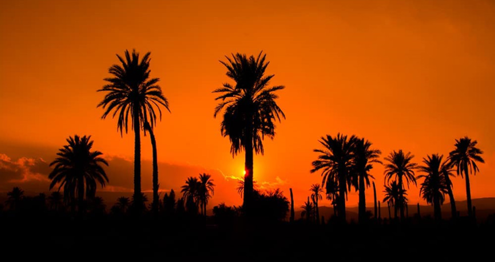 گرم ترین شهرهای ایران را بشناسید؛ ایرانشهر با دمای 32 درجه در صدر