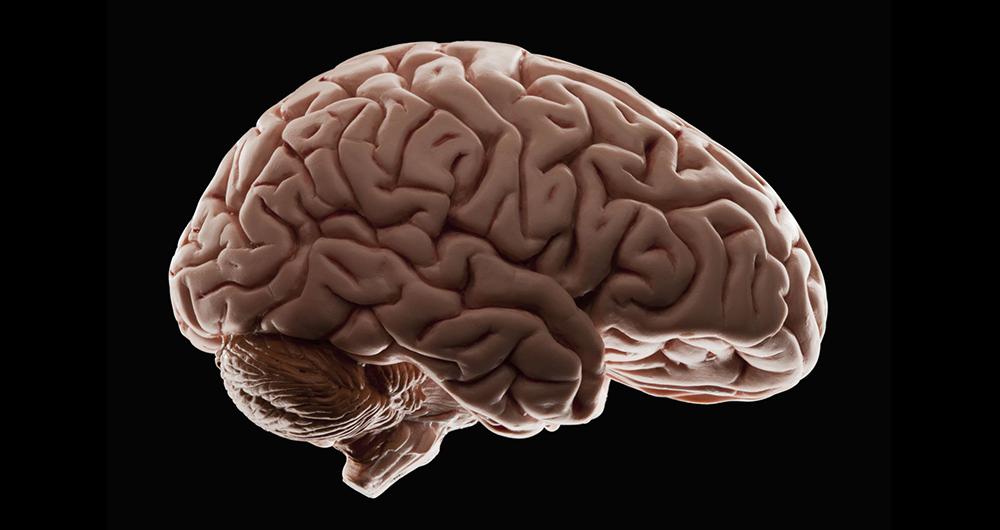 ام آر آی 100 ساعته پرجزئیات ترین تصویر از مغز...