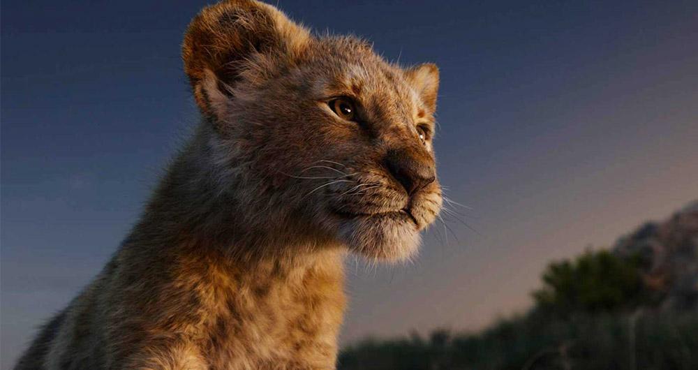 شیر شاه ۲۰۱۹