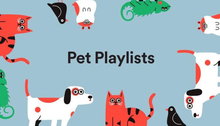 قابلیت جدید اسپاتیفای معرفی شد؛ پلی لیست اختصاصی برای حیوانات خانگی