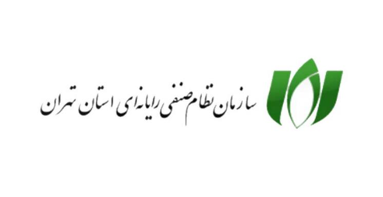 حملات متعدد به سامانه انتخابات هیات مدیره سازمان نظام صنفی رایانهای استان تهران