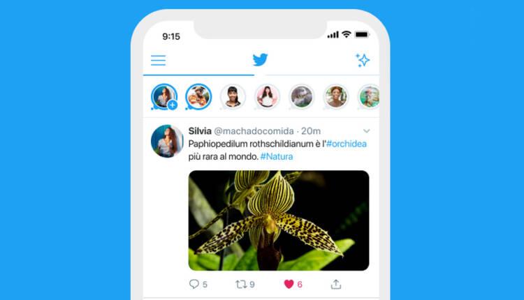 وجود یک باگ در توییتر از محو شدن کامل فلیت ها جلوگیری می کند
