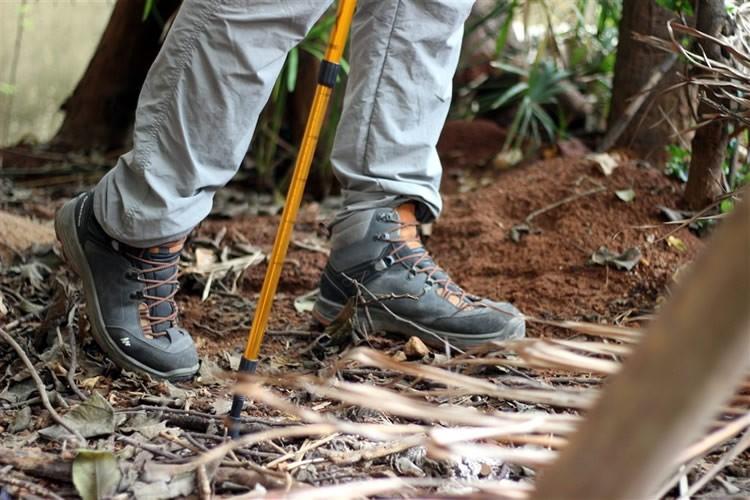 کفش طبیعت گردی