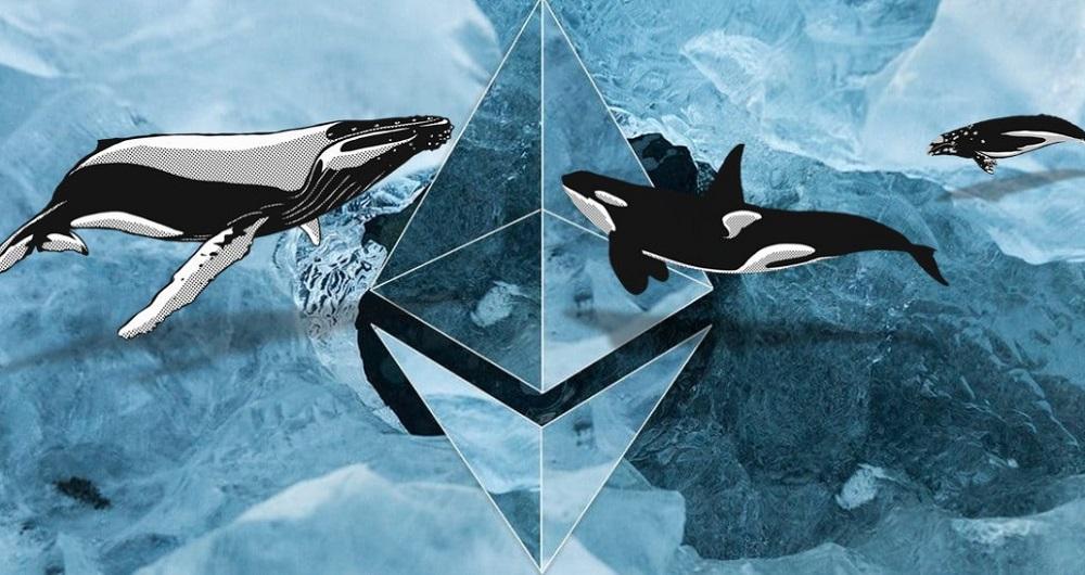 نهنگهای اتریوم داراییهای خود را از بازارهای ارز دیجیتال به کیف پولها منتقل میکنند