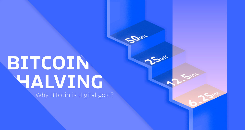 هاوینگ بیت کوین و تأثیر آن بر محدودسازی عرضه این ارز دیجیتال