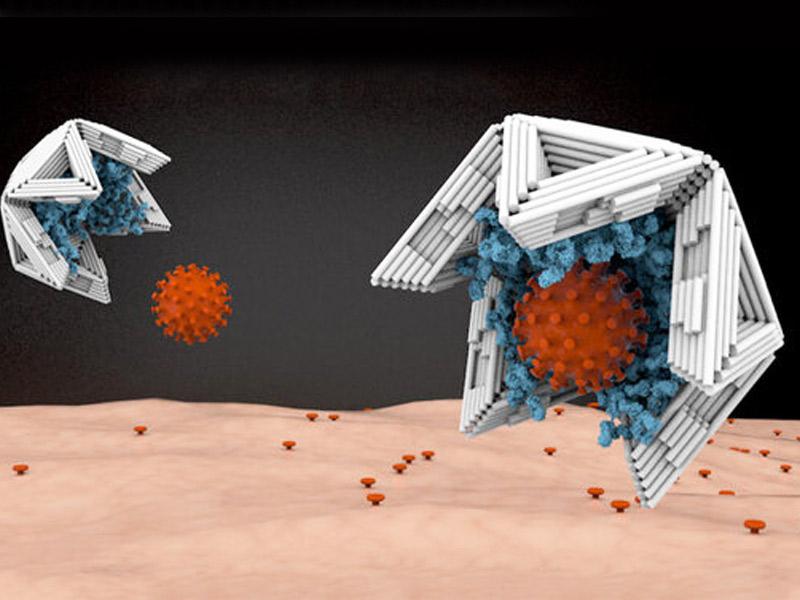 ابداع تله برای ویروسها