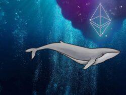 نهنگهای ارز دیجیتال اتریوم جمعآوری میکنند