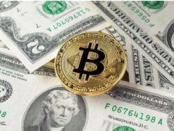 بیت کوین بالاتر از ۵۰ هزار دلار