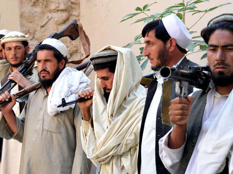 ۵۷۰ کشته طالبان