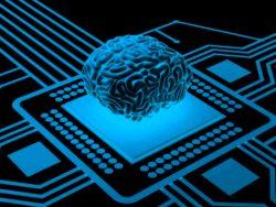 انتقال اطلاعات مغز روی یک فلش