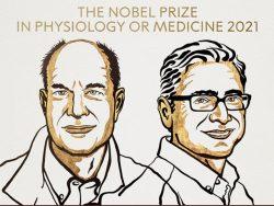 برندگان نوبل پزشکی ۲۰۲۱